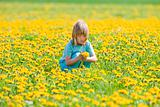 boy with long blond hair picking dandelions in a field