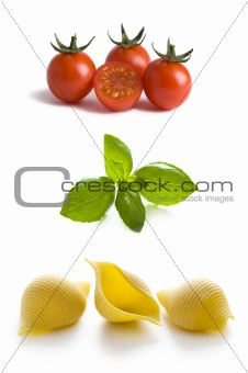 conchiglioni pasta shells, tomatoes and basil leaves