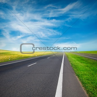 green field and road