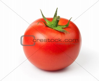 One Juicy Tomato on a white background