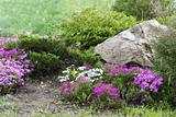 Garden Design with Rocks and Flowers (3)