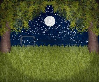 My sweet moonlight garden