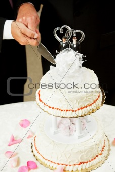 Gay Marriage - Cutting Wedding Cake