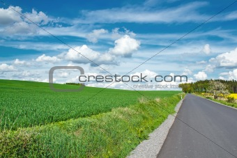 Beautiful summer rural landscape with road
