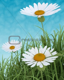 Spring Flowers in Grass on blue sky