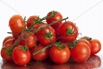 Tomatoes in trusses on a white background