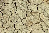 Cracks in the dried ground
