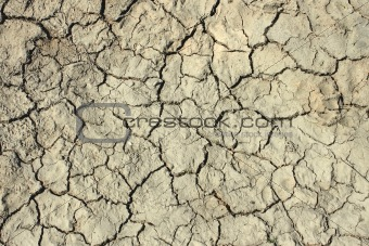 Cracks in the dried soil