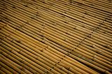 bamboo surface detail