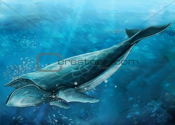 undersea - swimming whale 1