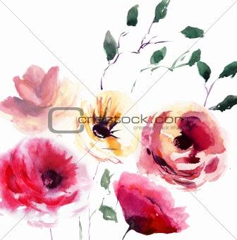 Beautiful summer flowers