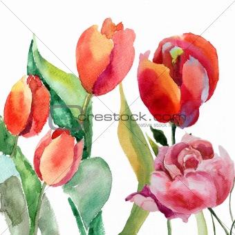 Watercolor illustration of Beautiful summer flowers
