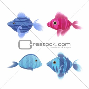 four fish illustrations