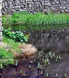 Trim castle wall and moat.