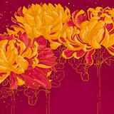 Romantic vector background with chrysanthemum