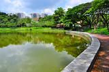 Punggol Park with reflection on water