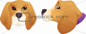 Cute Beagle dog head set
