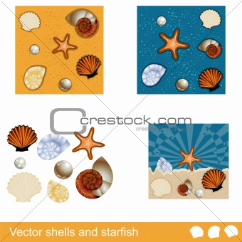 Vector shells and starfish