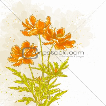 Cosmos flowers on textured background