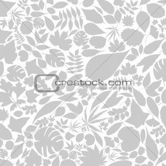 Leaf a background