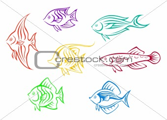 Colorful aquarium fishes set