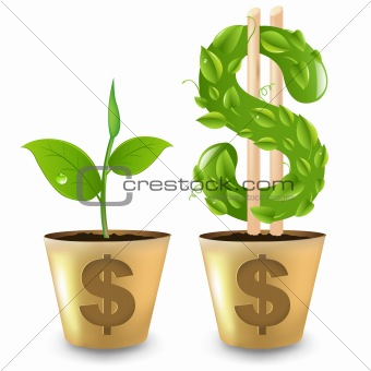 Gold Pot With Dollar And Sprout