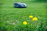 Robot lawn mower