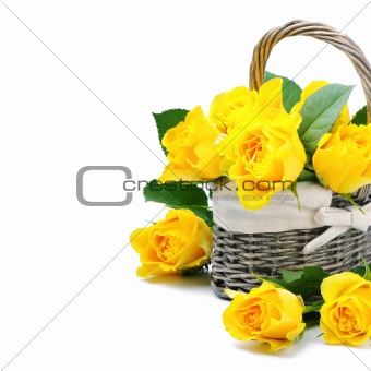 Freshly cut yellow roses in a rustic basket