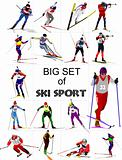 Big set of Ski sport colored silhouettes. Vector illustration