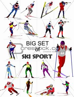 Big set of Ski sport colored silhouettes. Vector illustration