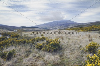 County Wicklow mountains