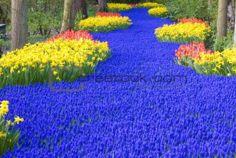 Keukenhof Gardens, Lisse, Netherlands