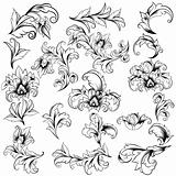 Set Of Classical Floral Design Elements