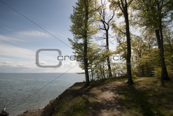 Forest path close to cliff