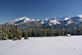 Mountain in winter. Rusinowa Polana. Tatry. Poland