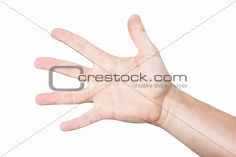 Men's palm, hand, arm. On a white background.