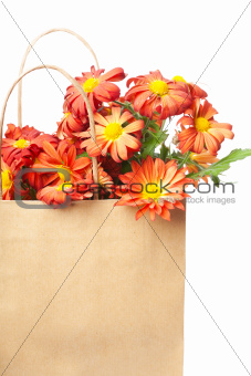Chrysanthemums in a paper bag