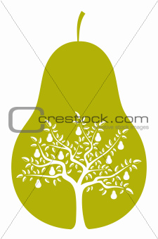 pear tree in pear