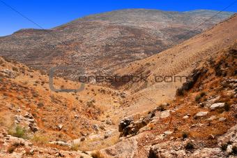 Judean Hills