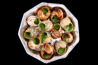 snails with herb butter