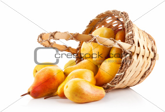 ripe pears in basket