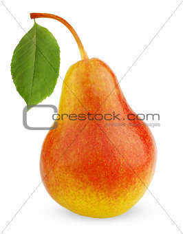 Ripe red-yellow pear fruit with leaf