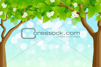 Green Tree Frame