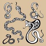2013 Year snake symbol.