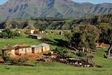Rural settlement and livestock