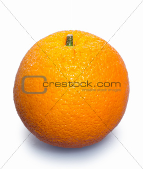 orange on the isolated background