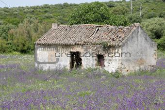 Rural left houses