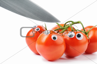Funny tomatoes with googly eyes
