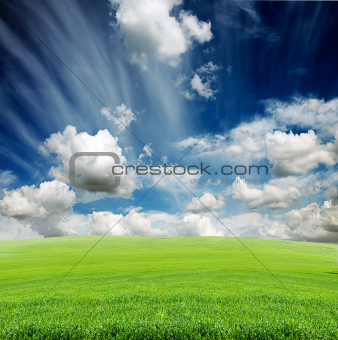 cloudy sky with green grass meadow
