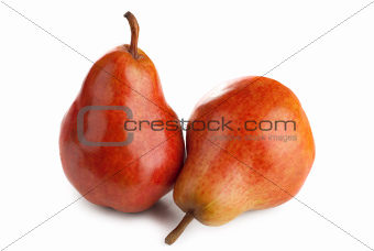 Two  pears on a white background